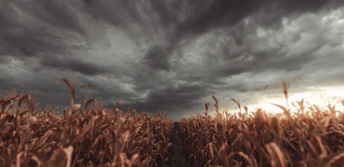 eco-ansia peculiarità e sintomi